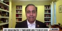 "Rep. Krishnamoorthi: We must summon ""9/11 spirit"" to face modern challenges"