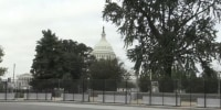 Capitol police request National Guard on standby ahead of right-wing rally Saturday