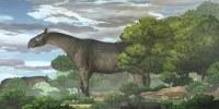 Image:  giant rhino Paraceratherium linxiaense