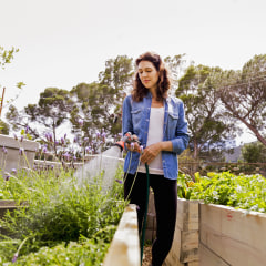 Woman watering plants at community garden. Looking for the best garden hose this summer? Learn how to shop for a garden hose and check out garden hoses from Home Depot, Flexzilla and more.