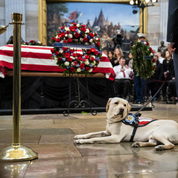 Image: Washington DC In Mourning For Late President George H.W. Bush