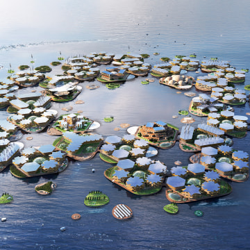 In calm, sheltered waters near coastal megacities, Oceanix City could be an adaptable and sustainable solution for human life on the ocean.