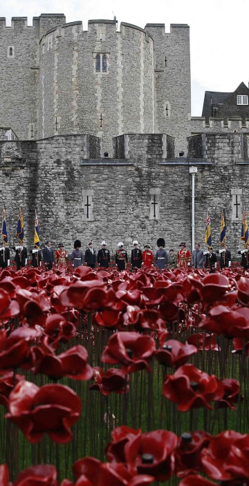 "Image: Servicemen and dignitaries stand amongst the ceramic poppies that form part of the art installation ""Blood Swept Lands and Seas of Red"", during an Armistice Day ceremony at the Tower of London"