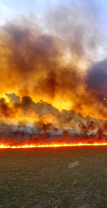 Image: BRAZIL-FIRE-TAIM