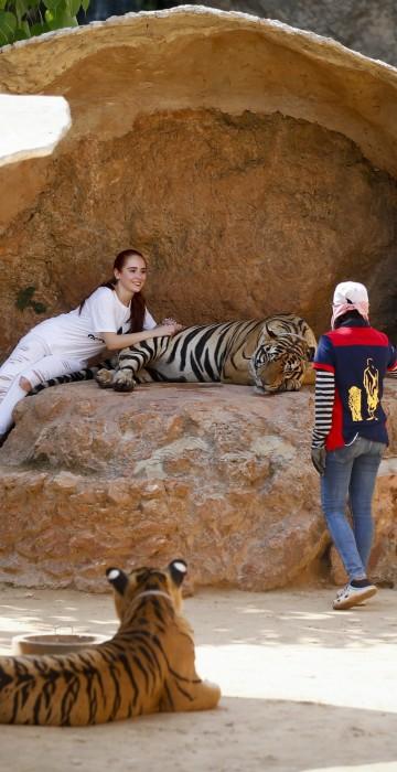 Image: Tiger Temple in Kanchanaburi