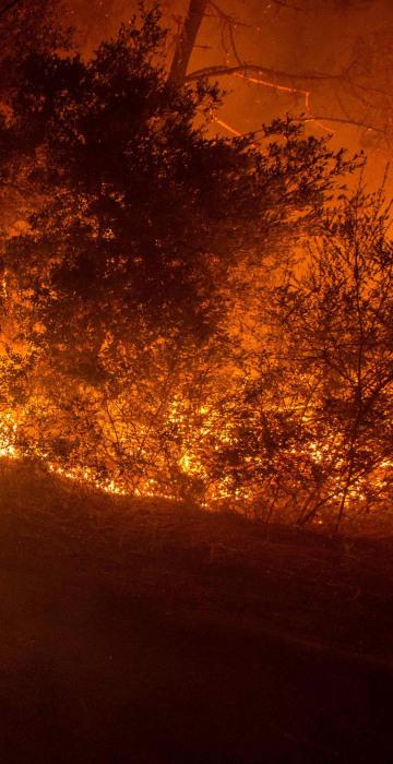 Image: US-WILDFIRE