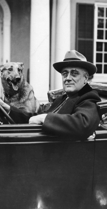 Image: FDR Behind The Wheel with his dog