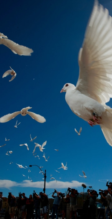 Image: Fifty-eight white doves are released in honor of the victims of the mass shooting in Las Vegas