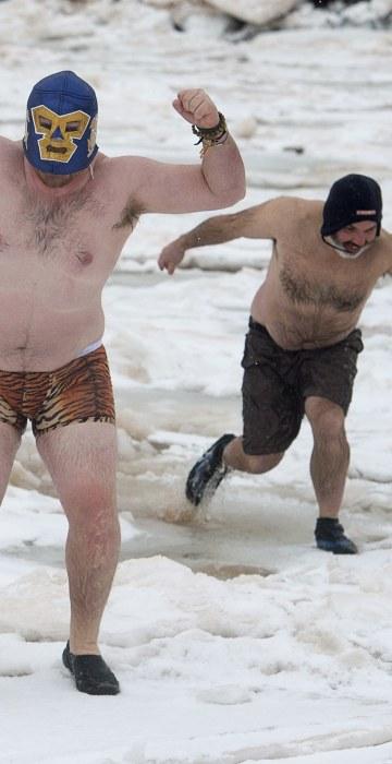 Image: polar bear dip