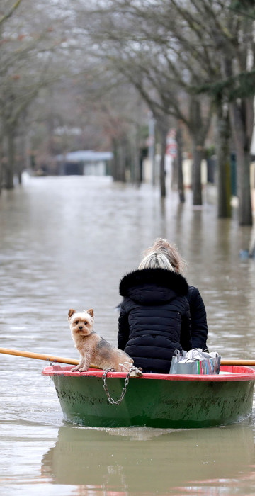 Image: Local residents and their dog go down a flooded stree
