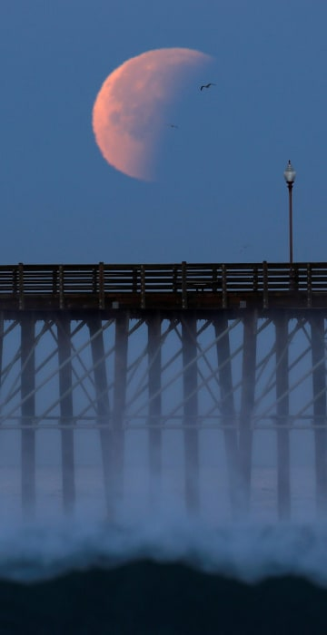 Image: A Blue Moon comes out of a lunar eclipse as it sets past an ocean pier in Oceanside, California