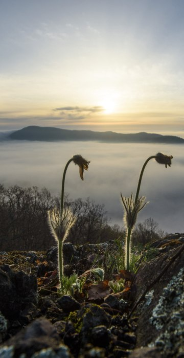Image: Spring in Slovakia