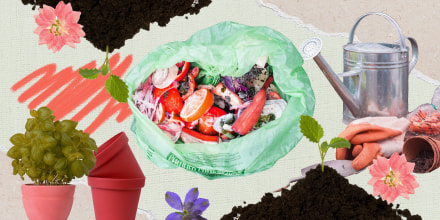 Photo illustration of composting bag and soul with plants on green craft paper