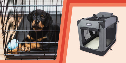 Illustration of a puppy in a crate and the Elitefield dog crate in grey