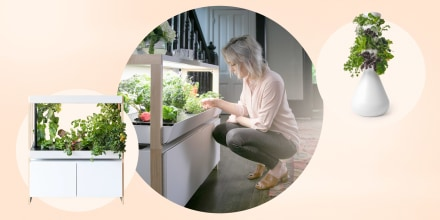 Shop the best indoor garden kits, whether you're a beginner or an expert gardener. The best indoor garden systems are from AeroGarden, Lettuce Grow and more.