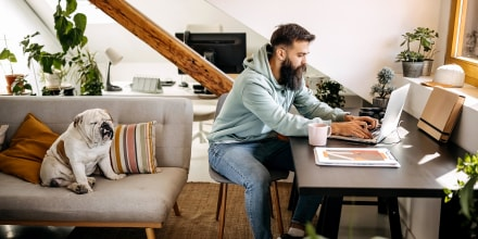 Young bearded man working from home with his dog, in a small space