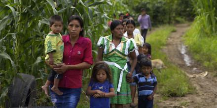 Casi la mitad de todos los niños menores de 5 años sufren de desnutrición crónica en Guatemala, según cifras de la ONU.