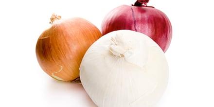 Ciertas cebollas de color blanco, rojo y dorado importadas desde México están relacionadas con un brote de salmonela en Estados Unidos, según informaron el 20 de octubre los Centros para el Control y la Prevención de Enfermedades (CDC, por sus siglas en inglés).