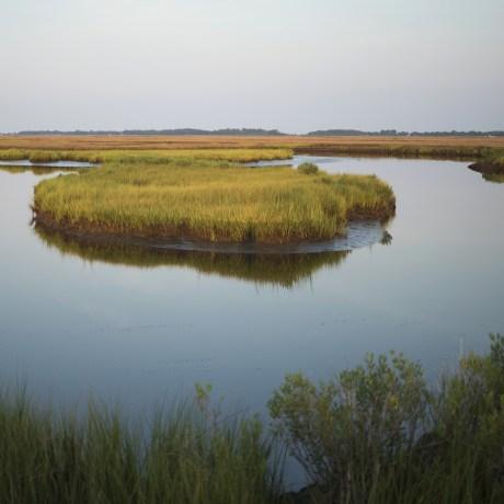 Image: Deal Island