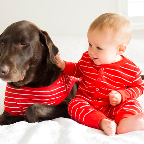 matching dog and owner pajamas