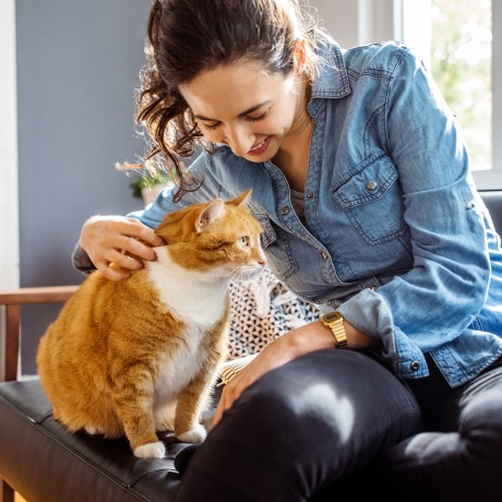 Young woman caressing her pet cat while sitting on couch in living room.