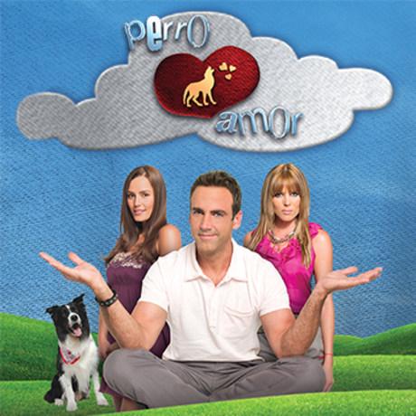 Perro Amor- Novela Colombiana