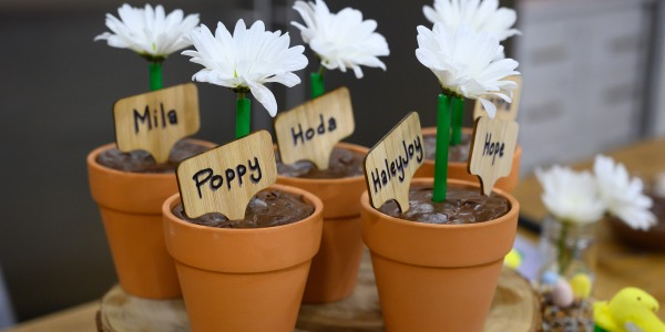 Flowerpot Brownies