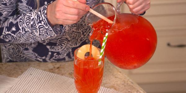 Sandra Lee's Tropical Rum Punch