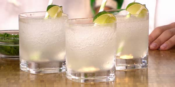Slimmed Down Frozen Gin and Tonic
