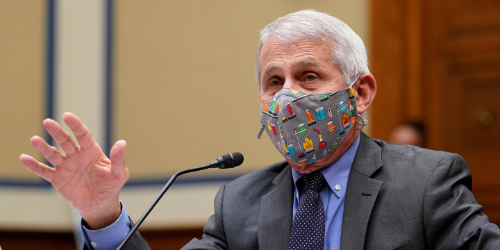 Image: Dr Anthony Fauci, House Oversight Select Subcommittee on the Coronavirus Crisis hearings on the Capitol Hill in Washington