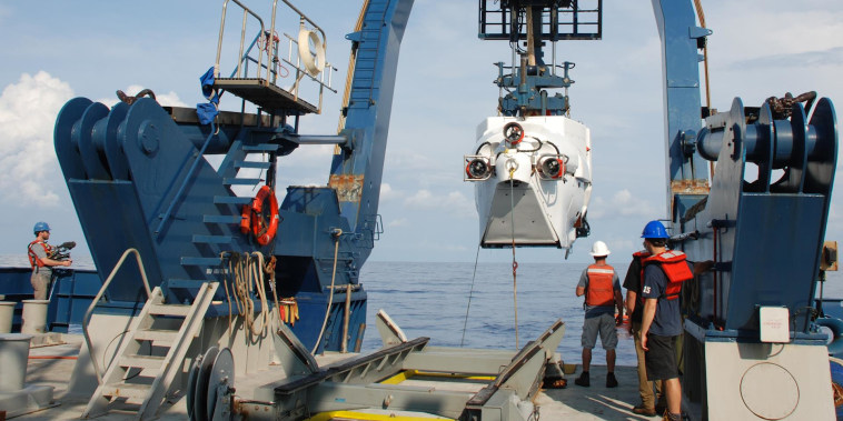 Scientists discover hidden coral reef off the coast of South Carolina