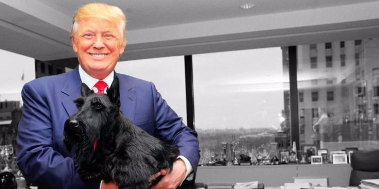 Trump's long history of dehumanizing people with 'dog' insults