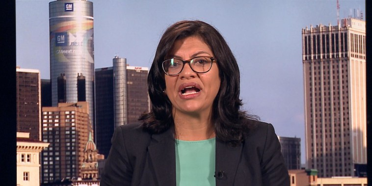 Tlaib: Our country is disconnected, not divided