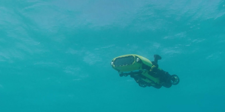 Ranger danger: A killer robot that could protect the Great Barrier Reef