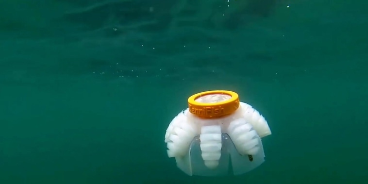 A squishy robot that can help study underwater reefs