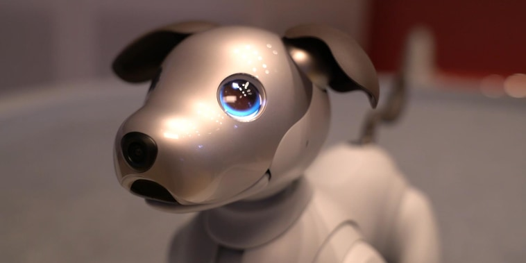 Sony's beloved robotic dog is back with a new bag of tricks