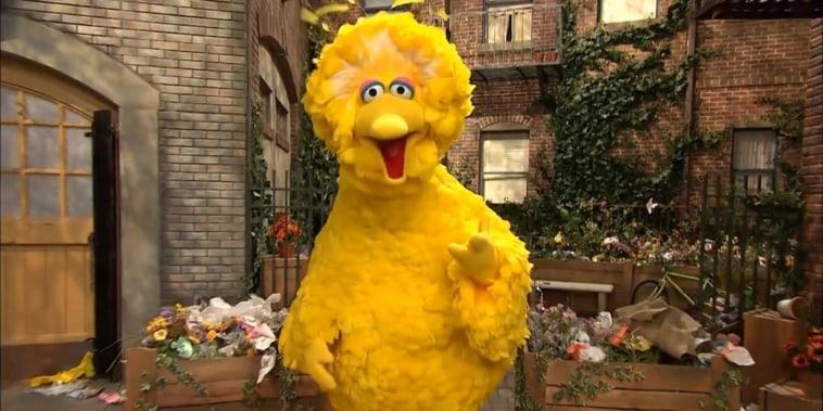 Big Bird puppeteer Caroll Spinney retires from 'Sesame Street'