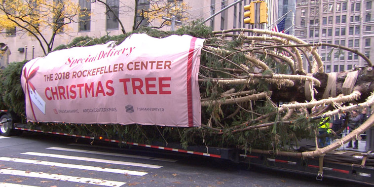 See the Rockefeller Center Christmas tree arrive to the plaza