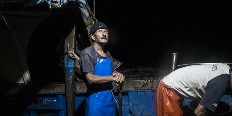 Two fishermen select fish from their catch, on the open sea south of Sicily, Aug. 26, 2015.