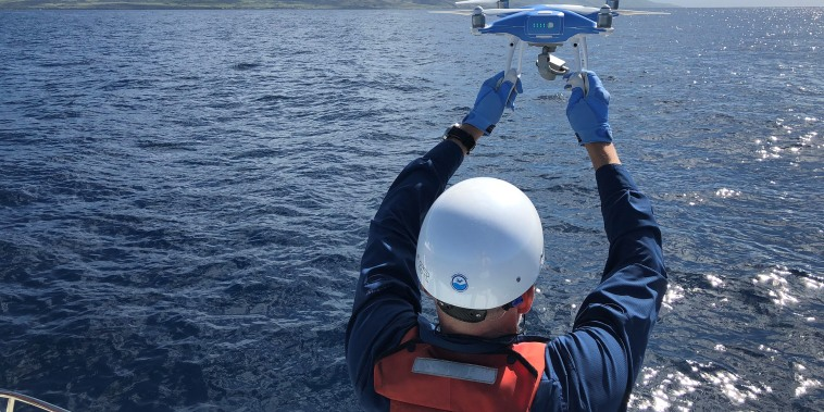 Image: A DJI Phantom 4 is launched off a research vessel