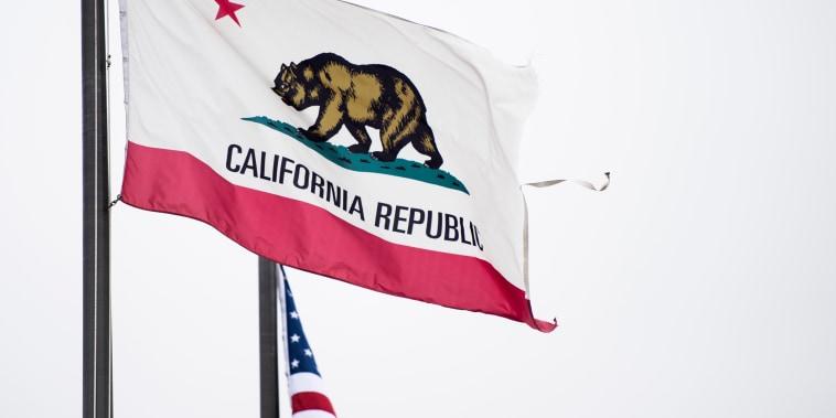 Image: California State Flag