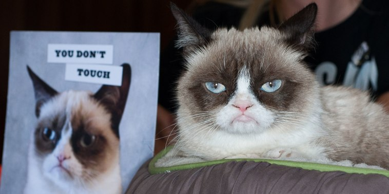 "Image: ""Grumpy Cat: A Grumpy Book"" Book Event"