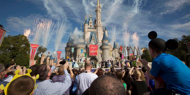 A crowd watches fireworks at Cinderella's castle in Walt Disney World in 2012.