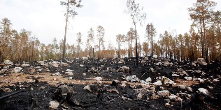 Image: Sweden wildfire