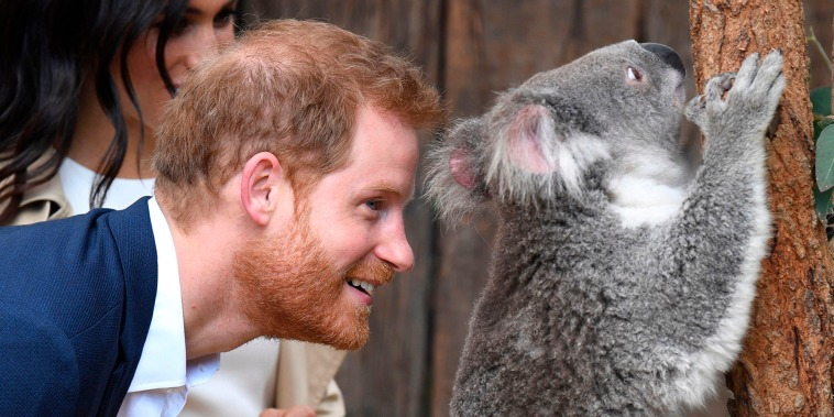 The Duke and Duchess of Sussex in Sydney