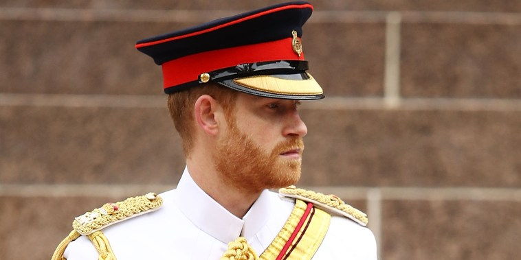 The Duke Of Sussex