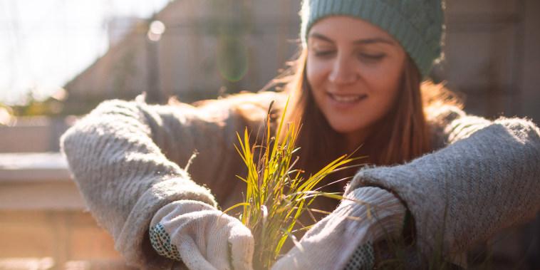 prepare garden for winter, winterize vegetable garden,  preparing garden for next season, preparing raised bed for winter