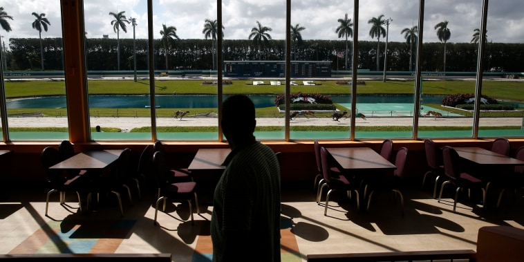 Image: A bettor watches a greyhound race at the Palm Beach Kennel Club in West Palm Beach