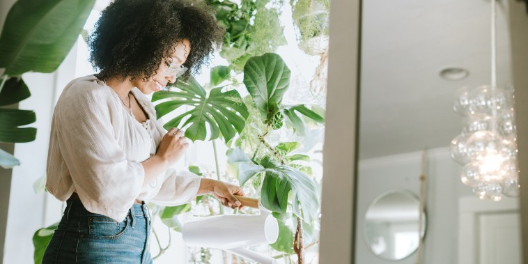 Image: A Young Woman Waters Her Houseplants