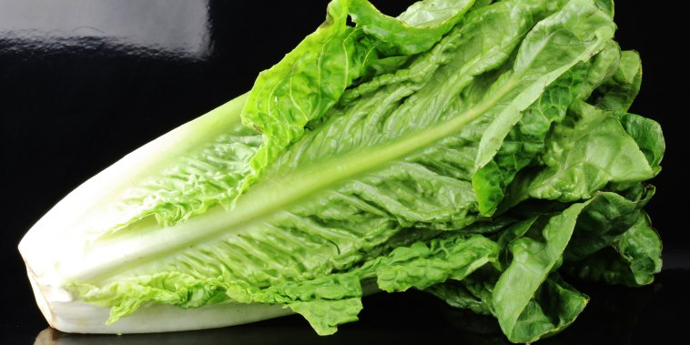 Image: Romaine lettuce on a black background (Lactuca sativa L. var. longifolia)